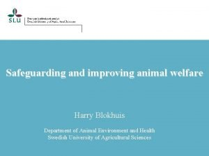 Safeguarding and improving animal welfare Harry Blokhuis Department