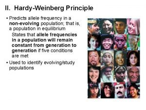 II HardyWeinberg Principle Predicts allele frequency in a
