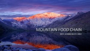 MOUNTAIN FOOD CHAIN BRETT JASMINE MADDY EMILY WHATS