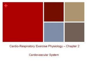 CardioRespiratory Exercise Physiology Chapter 2 Cardiovascular System CARDIOVASCULAR