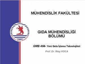 MHENDSLK FAKLTES GIDA MHENDSL BLM GMB 464 Yeni