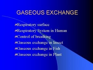 GASEOUS EXCHANGE Respiratory surface Respiratory System in Human
