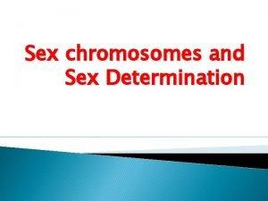 Sex chromosomes and Sex Determination INTRODUCTION Sex chromosomes