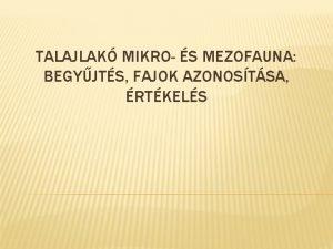 TALAJLAK MIKRO S MEZOFAUNA BEGYJTS FAJOK AZONOSTSA RTKELS