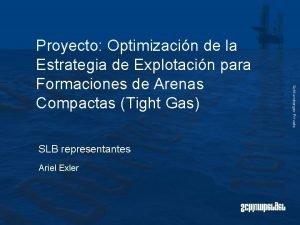 SLB representantes Ariel Exler Schlumberger Private Proyecto Optimizacin