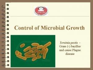 Control of Microbial Growth Yersinia pestis Gram bacillus