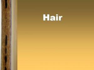 Hair Hair Analysis Students will learn hair is