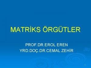 MATRKS RGTLER PROF DR EROL EREN YRD DO