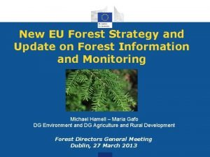 New EU Forest Strategy and Update on Forest