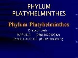 PHYLUM PLATYHELMINTHES Di susun oleh MARLINA 0806103010032 RODHA
