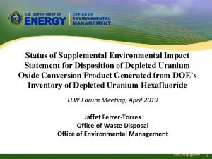 Status of Supplemental Environmental Impact Statement for Disposition