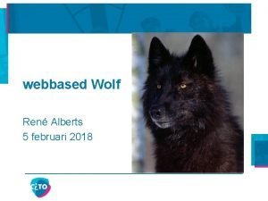 webbased Wolf Ren Alberts 5 februari 2018 Gegevens