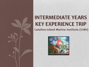 INTERMEDIATE YEARS KEY EXPERIENCE TRIP Catalina Island Marine