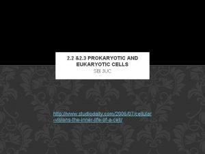2 2 2 3 PROKARYOTIC AND EUKARYOTIC CELLS