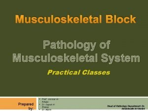Musculoskeletal Block Pathology of Musculoskeletal System Practical Classes