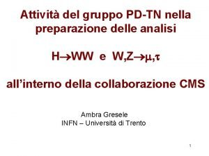 Attivit del gruppo PDTN nella preparazione delle analisi