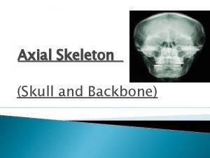 Axial Skeleton Skull and Backbone Axial vs Appendicular