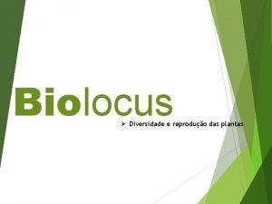 Biolocus Diversidade e reproduo das plantas CARACTERSTICAS GERAIS