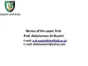 Nerves of the upper limb Prof Abdulameer AlNuaimi
