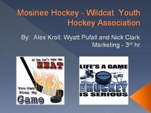 Mosinee Hockey Wildcat Youth Hockey Association By Alex