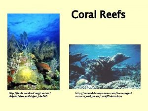 Coral Reefs http tools coralreef orgcontent objectsview acs