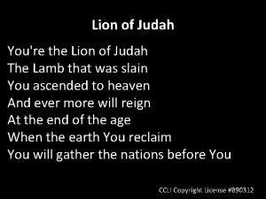 Lion of Judah Youre the Lion of Judah