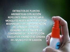EXTRACTOS DE PLANTAS AROMTICAS CON ACCIN REPELENTE PARA