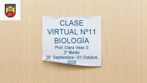 CLASE VIRTUAL N 11 BIOLOGA Prof Clara Veas
