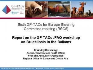 Sixth GFTADs for Europe Steering Committee meeting RSC