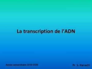La transcription de lADN Anne universitaire 2019 2020