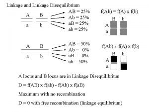 Linkage and Linkage Disequilibrium AB 25 A B