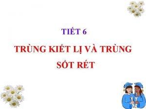 TIT 6 TRNG KIT L V TRNG ST