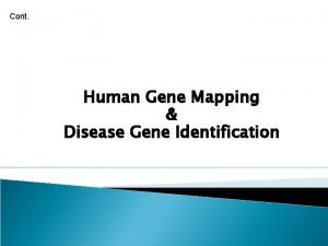 Cont Human Gene Mapping Disease Gene Identification MAPPING