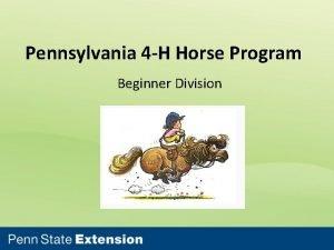 Pennsylvania 4 H Horse Program Beginner Division Beginner