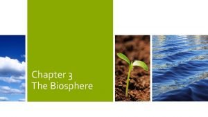 Chapter 3 The Biosphere The Biosphere A Species