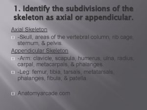 1 Identify the subdivisions of the skeleton as