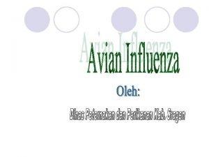 Penyebab l Avian Influenza atau Flu Burung merupakan