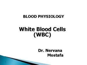 BLOOD PHYSIOLOGY White Blood Cells WBC Dr Nervana