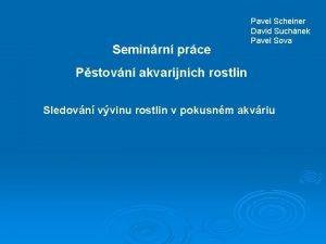 Seminrn prce Pavel Scheiner David Suchnek Pavel Sova