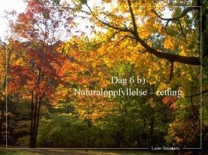 Dag 6 b Naturaloppfyllelse retting Lasse Simonsen 1