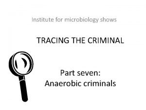 Institute for microbiology shows TRACING THE CRIMINAL L