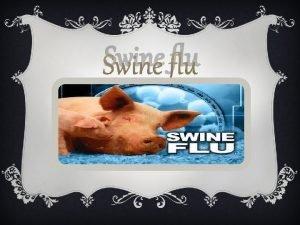 Swine flu What is swine flu v It