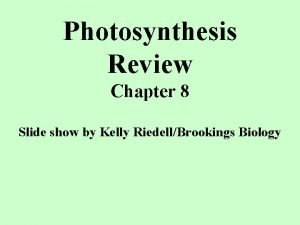 Photosynthesis Review Chapter 8 Slide show by Kelly