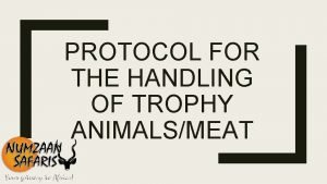 PROTOCOL FOR THE HANDLING OF TROPHY ANIMALSMEAT Category