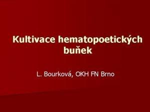Kultivace hematopoetickch buek L Bourkov OKH FN Brno