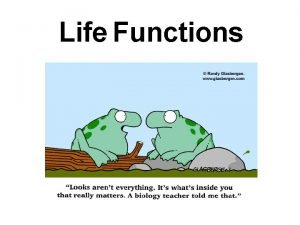 Life Functions A CHARACTERISTICS OF LIFE Biology is