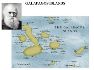GALAPAGOS ISLANDS GALAPAGOS ISLANDS GALAPAGOS ISLANDS GALAPAGOS ISLANDS