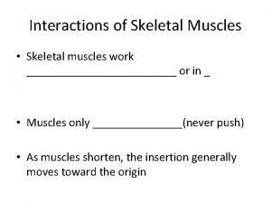 Interactions of Skeletal Muscles Skeletal muscles work or