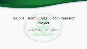 Regional Harmful Algal Bloom Research Project Laura Webb