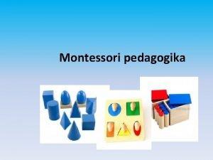 Montessori pedagogika alternativn vchovn vzdlvac program Marie Montessori
